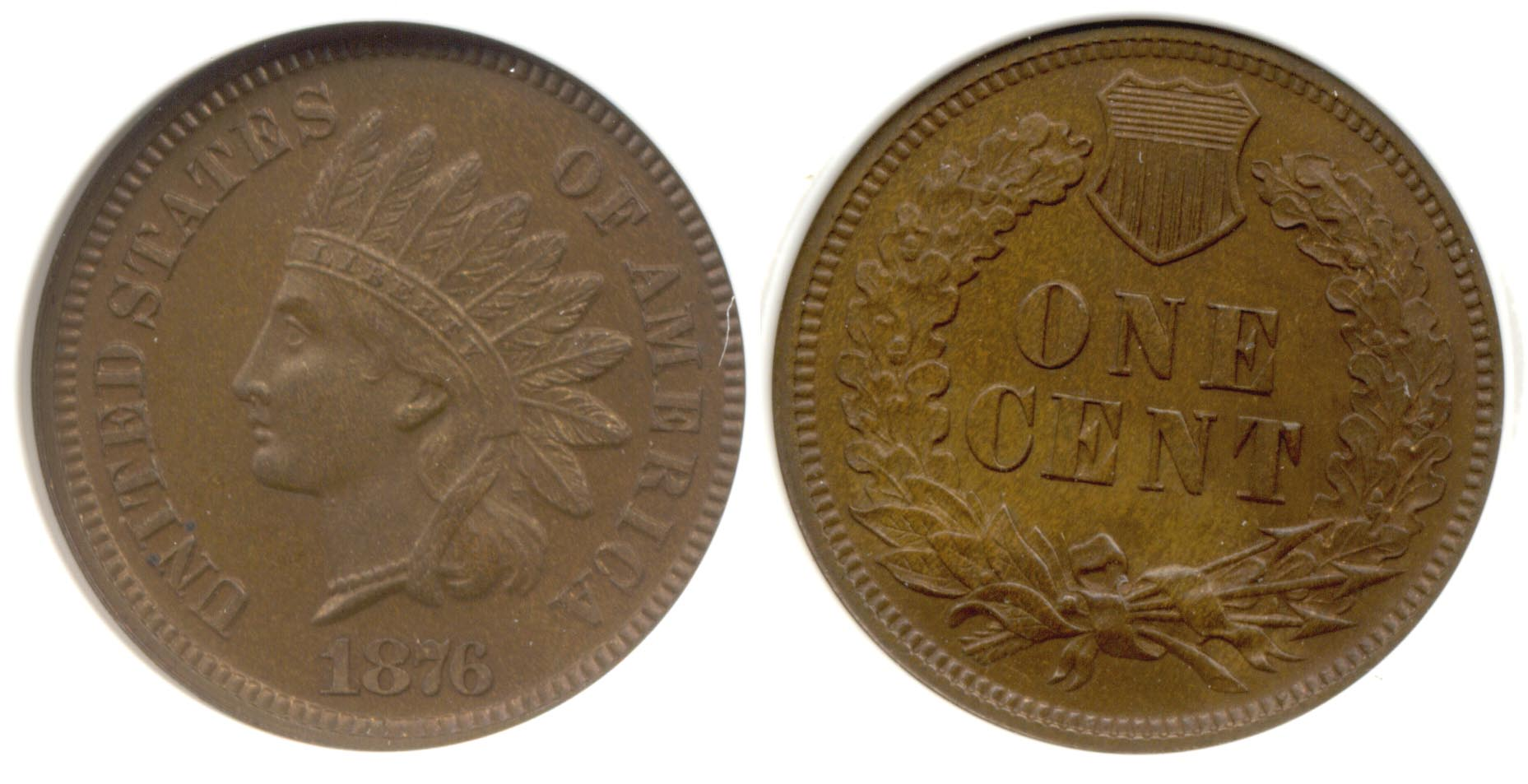 1876 Indian Head Cent PCI Proof-66 Brown