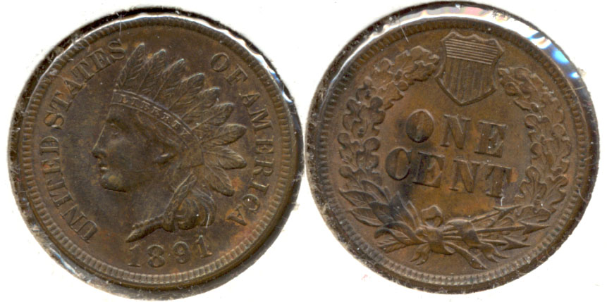 1891 Indian Head Cent MS-63 Brown