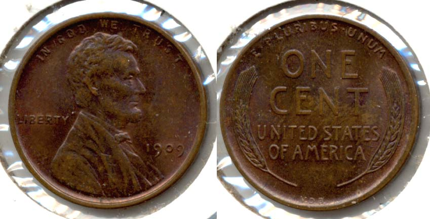 1909 VDB Lincoln Cent MS-63 Brown b