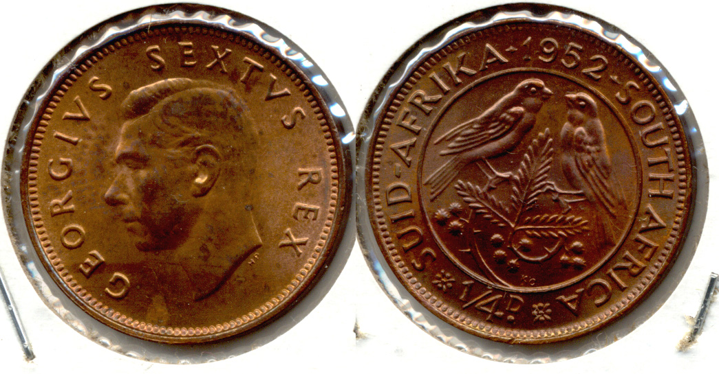 1952 South Africa 1/4 Penny MS-63 a