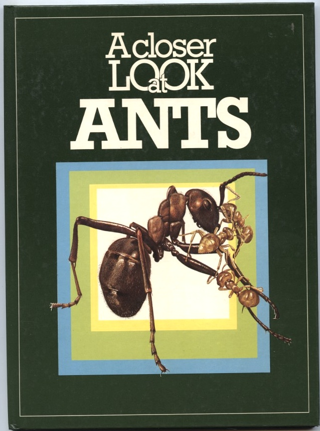 A Closer Look at Ants by Valerie Pitt and David Cook Published 1975