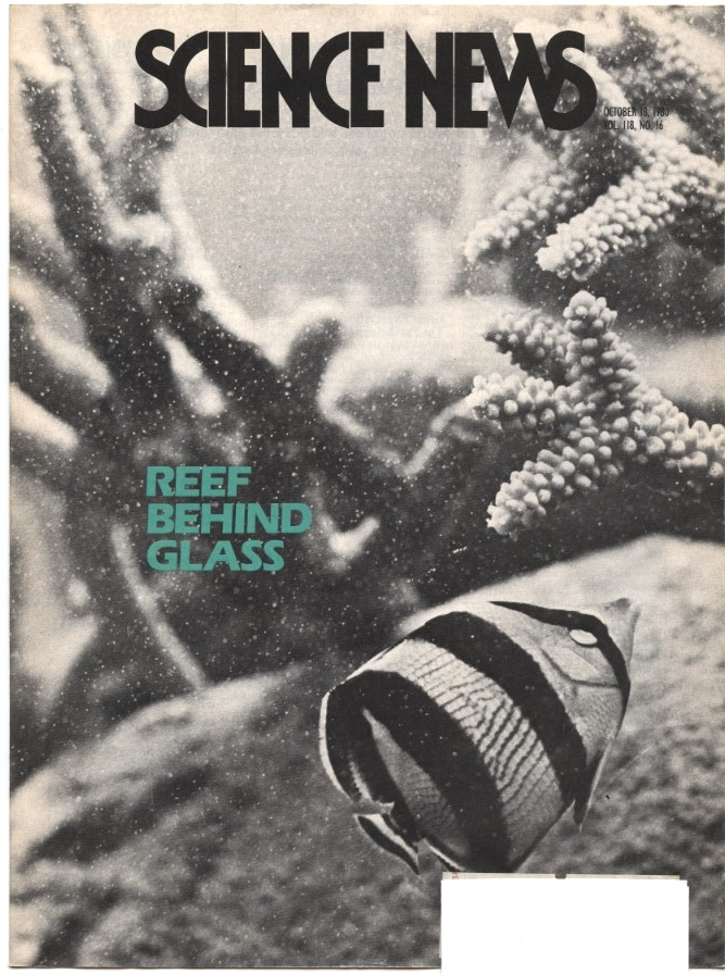 Science News October 18 1980 Reef Behind Glass