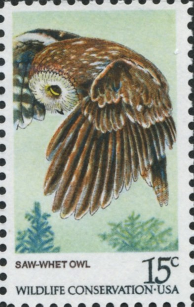 Scott 1761 15 Cent Stamp Saw Whet Owl