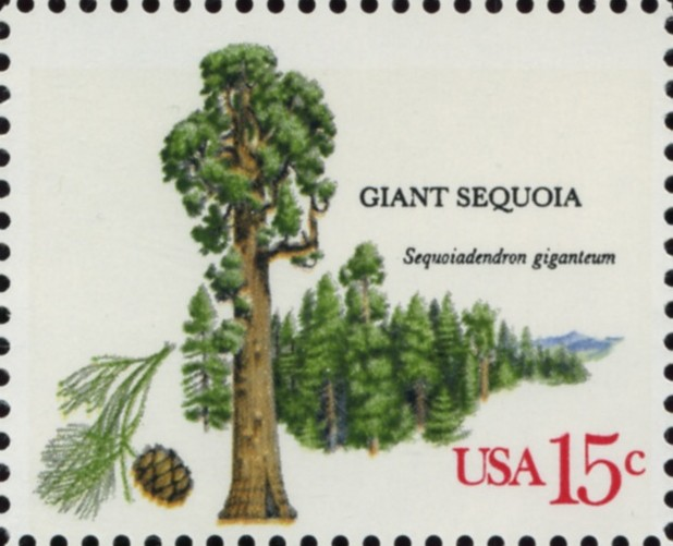 Scott 1764 15 Cent Stamp Giant Sequoia