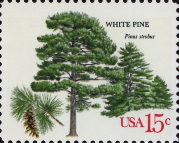 Scott 1765 15 Cent Stamp White Pine