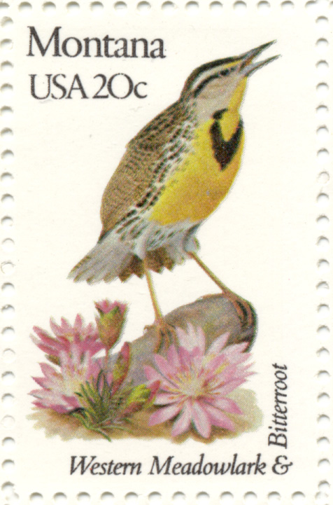 Scott 1978 20 Cent Stamp State Birds and Flowers Montana Western Meadowlark and Bitterroot