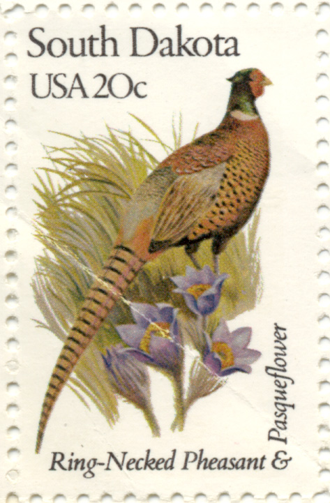Scott 1993 20 Cent Stamp State Birds and Flowers South Dakota Ring-Necked Pheasant and Pasqueflower