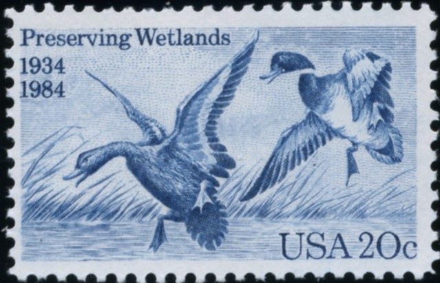 Scott 2092 20 Cent Stamp Preserving Wetlands