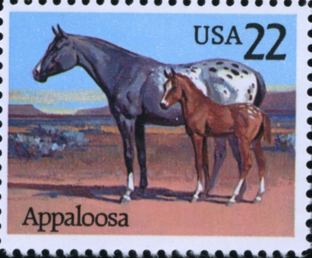 Scott 2158 22 Cent Stamp Appaloosa Horse