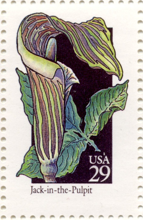 Scott 2650 Wildflowers Jack In The Pulpit 29 Cent Stamp