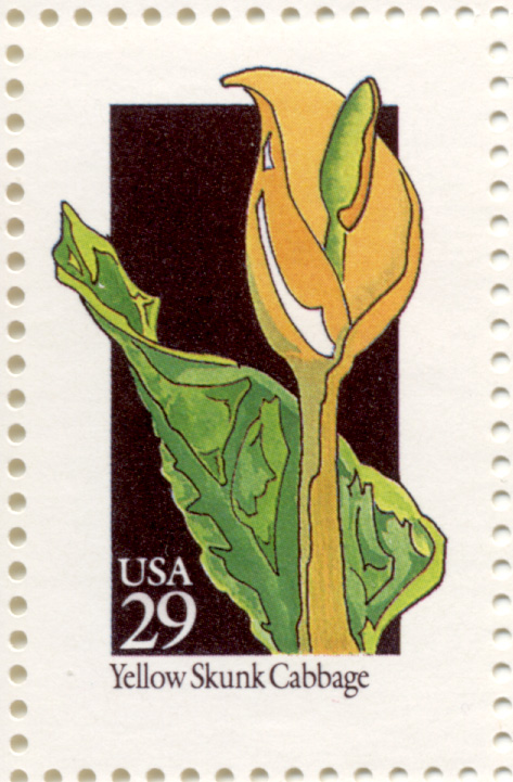 Scott 2693 Wildflowers Yellow Skunk Cabbage 29 Cent Stamp