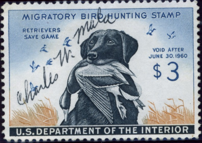 Scott RW26 3 Dollar Department of the Interior Duck Stamp Labrador Retriever