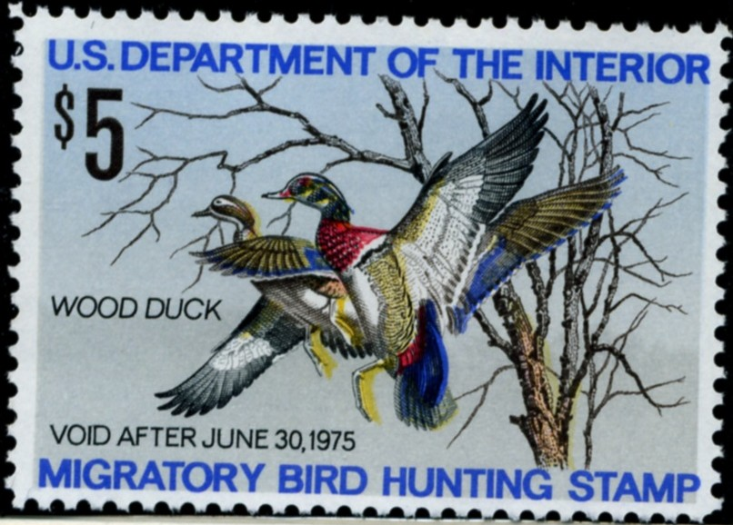 Scott RW41 5 Dollar Department of the Interior Duck Stamp Wood Duck a